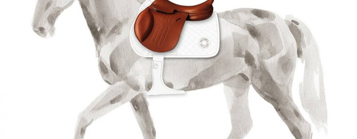 Ultimate Equestrian Accessory: Hermès Personalized Saddles