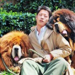 Tibetan Mastiff Sold for Almost €1.4 Million is the World's Most Expensive Dog