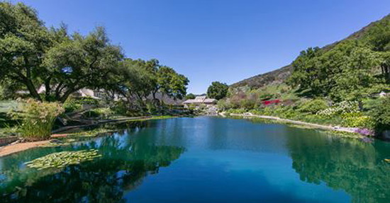 Amber Hills - Secluded Hideaway in Brentwood on Sale by Concierge Auctions