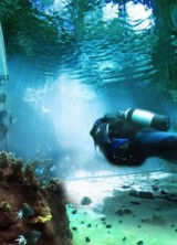 World`s Largest Underwater Themed Park Planned for Dubai