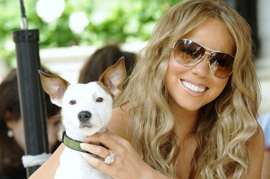Mariah Carey Splashed Out £115,000 on Vacation for Her Dogs