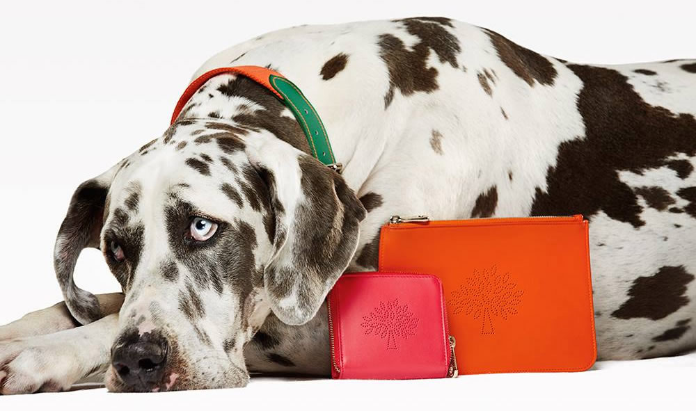 Mulberry's New Blossom Collection Paired with Pooches