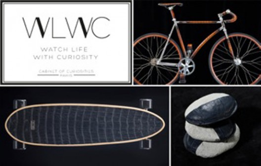 WATCH LIFE WITH CURIOSITY - A CABINET OF CURIOSITIES OF A NEW KIND 2015 EDITION