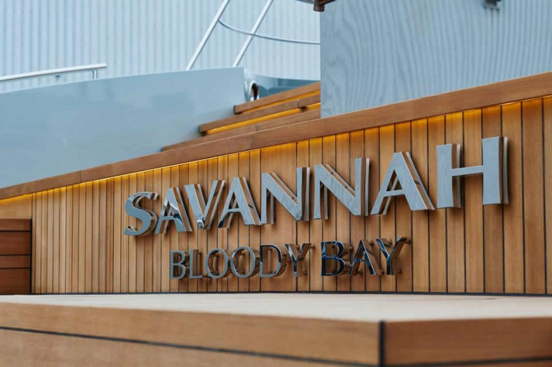 Savannah World S First Hybrid Mega Yacht Extravaganzi
