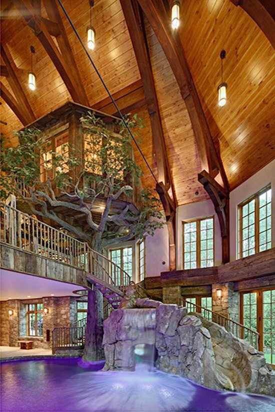 Lakefront dream home lists with indoor tree house for Building an indoor pool at home