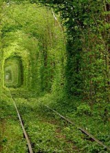 Most Romantic Place on Earth – Tunnel of Love in Ukraine