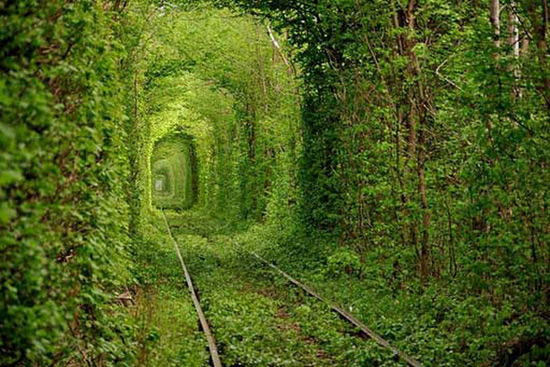 Most Romantic Place on Earth - Tunnel of Love in Ukraine