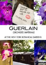 Experience Guerlain's Orchid Evenings at New York's Botanical Garden