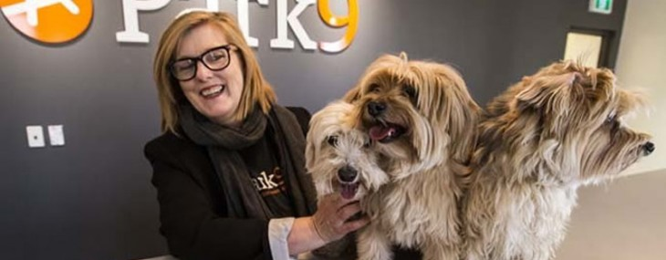Park9 - Toronto's First Luxury Resort for Pets