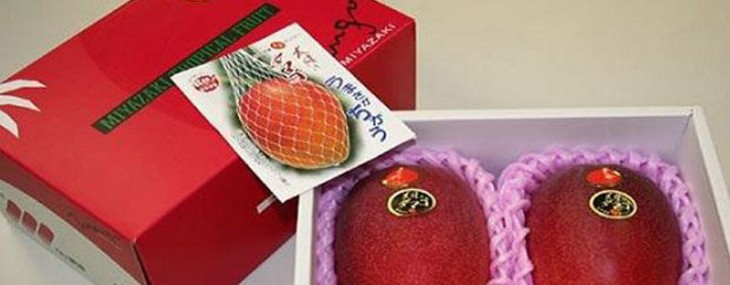 Would You Pay $2,500 For A Pair of Japanese Mangoes?