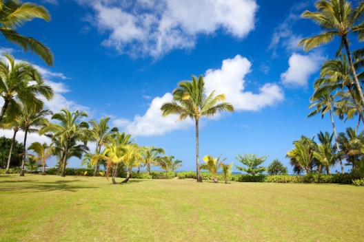 Julia Roberts' Hawaiian Beachfront Estate On Sale for $30 Million