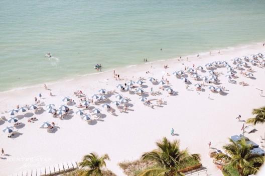 LaPlaya Beach Resort And LaPlaya Beach Club In Naples