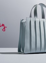 Max Mara's New Whitney Bag