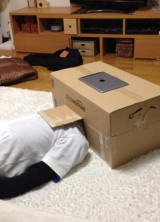 The Japanese Invented Home Theater That You Can Make Yourself