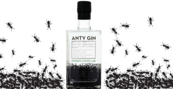 Would You Try Gin Made From ANTS?