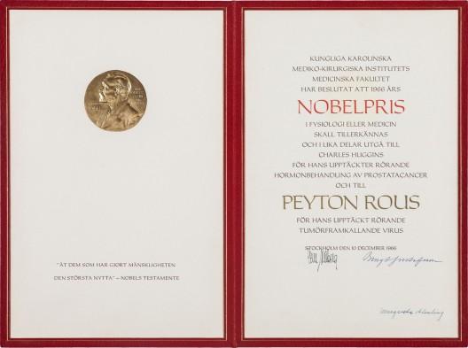 Francis Peyton Rous Nobel Prize Medal at Auction