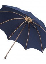 Would You Pay $8,000 For Umbrella?