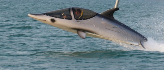 Seabreacher Z - Most Extreme Dolphin Style Watercraft