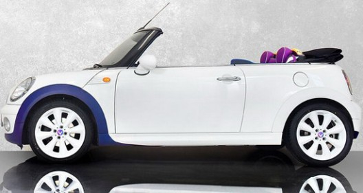 Vilner Mini One Cabrio