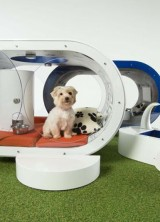 Samsung's High-Tech Dream Doghouse