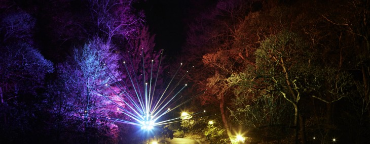 See the London in a New Light in First Lumiere Festival