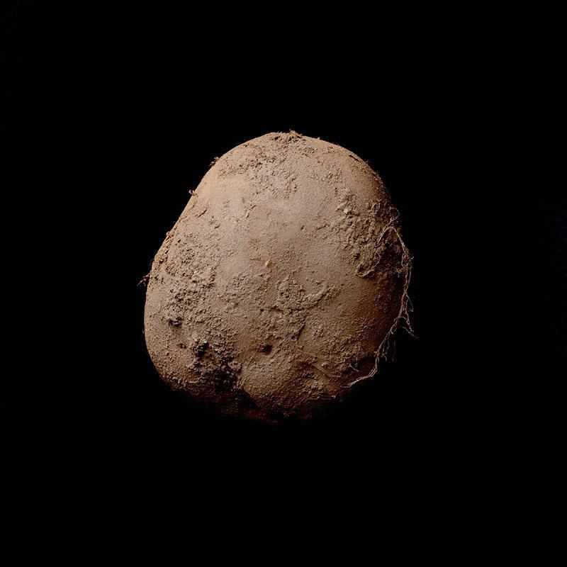 $1 Million Photo of Potato