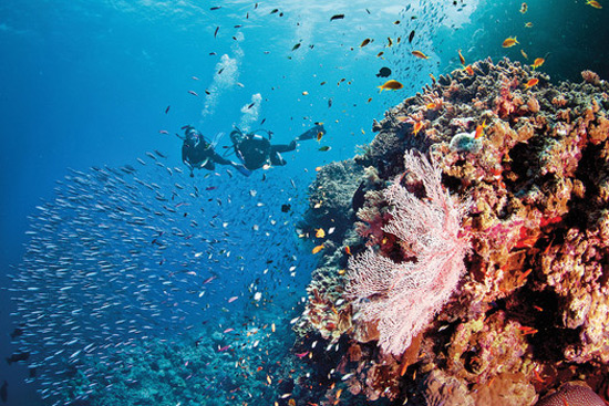 Silversea Expeditions' cruises feature scuba diving excursions