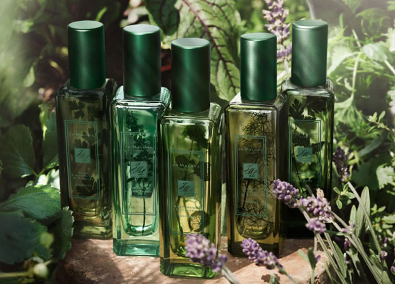 The Herb Garden - Jo Malone's New Fragrance Collection