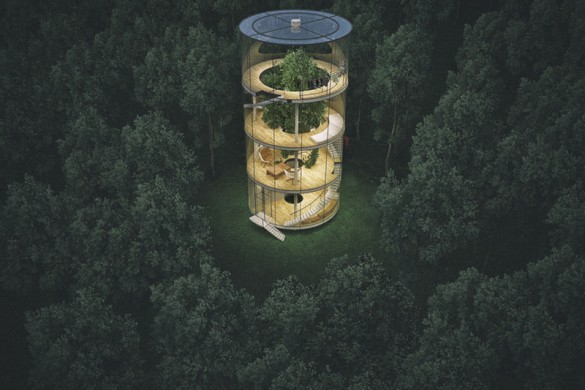 """Tree in the House"" – Glass Treehouse"