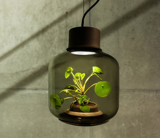 Grow Plants Lamps