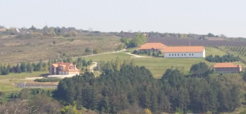 Ranch In Serbia